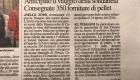 Articoli_di_giornale-8